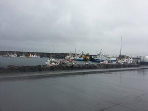 Hafen Olafsvik