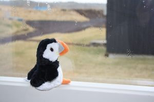 The Little Puffin