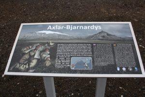 Axlar-Bjarnadys